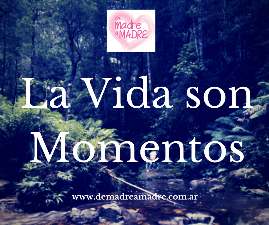 La Vida son Momentos